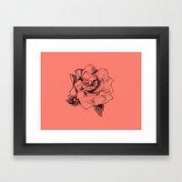 Rose on Rose Framed Art Print