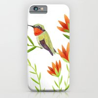 iPhone & iPod Case featuring Ruby Throated Hummingbird by Stephanie Fizer Coleman
