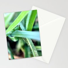 Grass. Stationery Cards