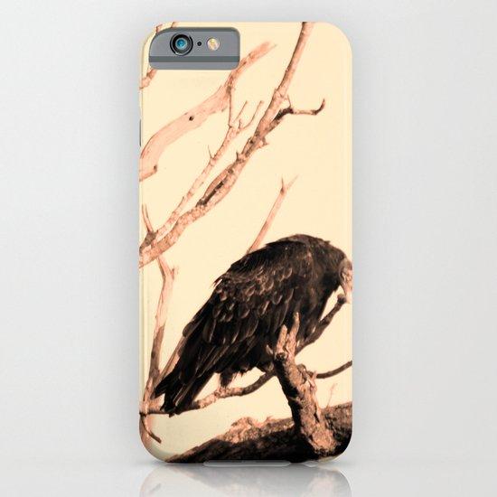 Turkey Vultures iPhone & iPod Case