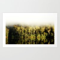 Lake Barrington Art Print