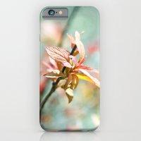 Color Bloom iPhone 6 Slim Case