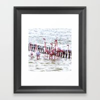 Flamingos Dancing Framed Art Print