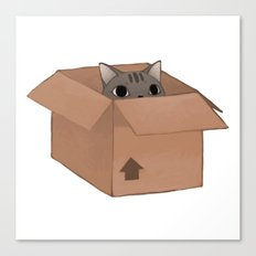 Box Cat Canvas Print