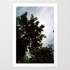 great sky Art Print