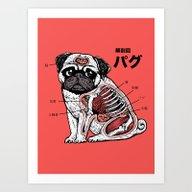 Pug Anatomy Art Print