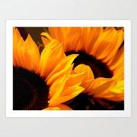 Sunflowers for my beloved Anna Art Print