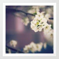 White Floret Art Print
