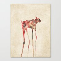 Old Sighthound Canvas Print