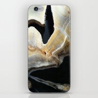 Ravine iPhone & iPod Skin