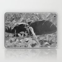 Black Plume Laptop & iPad Skin