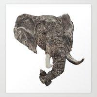 Street Elephant Art Print