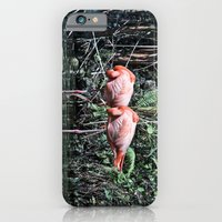 iPhone & iPod Case featuring Pink Flamingos by Nick Douillard