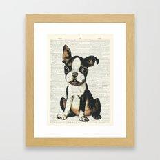 Boston Terrier Vintage Puppy Framed Art Print