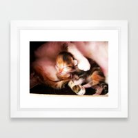 Cats hug Framed Art Print