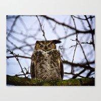 The Disgruntled Owl (Ori… Canvas Print