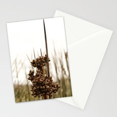 Sharp Rush Stationery Cards