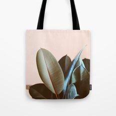 Ficus Elastica #1 Tote Bag