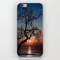 Sorrento Evening Sunset iPhone & iPod Skin