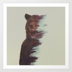 Observing Bear Art Print