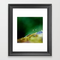 Sprout Framed Art Print