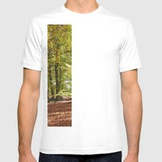 Autumnal beech trees in a natural woodland. Norfolk, UK. White Mens Fitted Tee SMALL