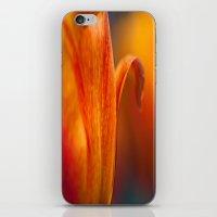 Tulip Bends iPhone & iPod Skin