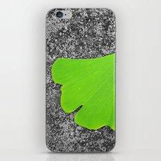 ginkgo leaf I iPhone & iPod Skin