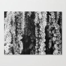 eternal Canvas Print