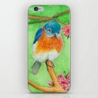 Bluebirds iPhone & iPod Skin