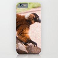 Varecia Rubra iPhone 6 Slim Case