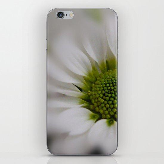 White Marguerite iPhone & iPod Skin