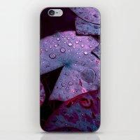 Lily Pads XVI iPhone & iPod Skin