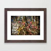 the thorn birds Framed Art Print