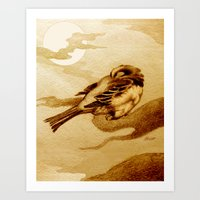 Sparrow By Moonlight Art Print