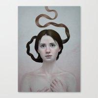 289 Canvas Print