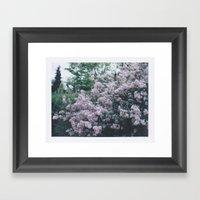 Korean Lilac Polaroid Framed Art Print