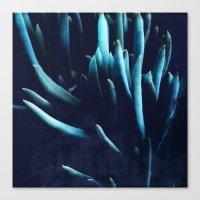 alien plants Canvas Print