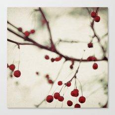 dark berries Canvas Print