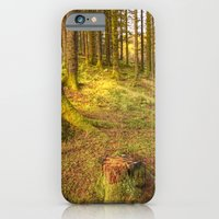Stump Wood iPhone 6 Slim Case