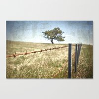 Tree Behind Fence Canvas Print
