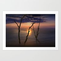 Colorful Sunset with Bare Tree Trunks on a Calm Lake Art Print