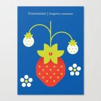 Fruit: Strawberry Canvas Print