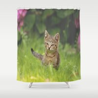 Little Tiger in Gras Shower Curtain