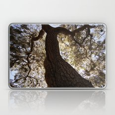 Looking Upwood 2 Laptop & iPad Skin