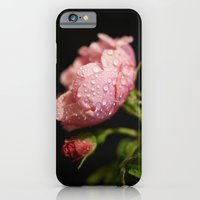 Weeping Rose II iPhone 6 Slim Case