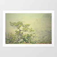 Caribbean Bonsai Art Print
