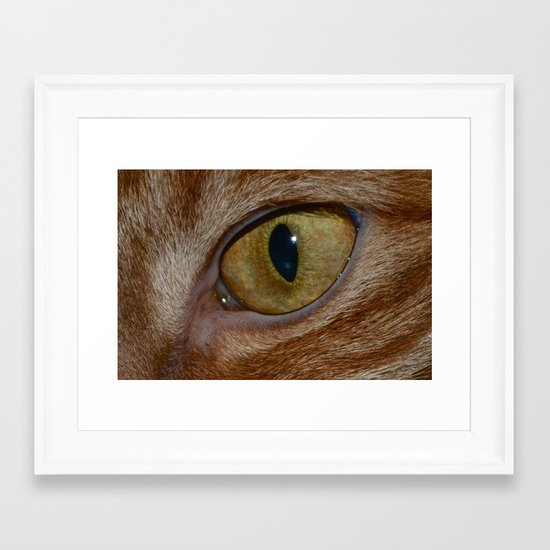 Cat Eye Framed Art Print