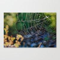 Spider Web Canvas Print