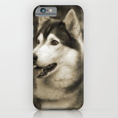 husky iPhone 6 Slim Case